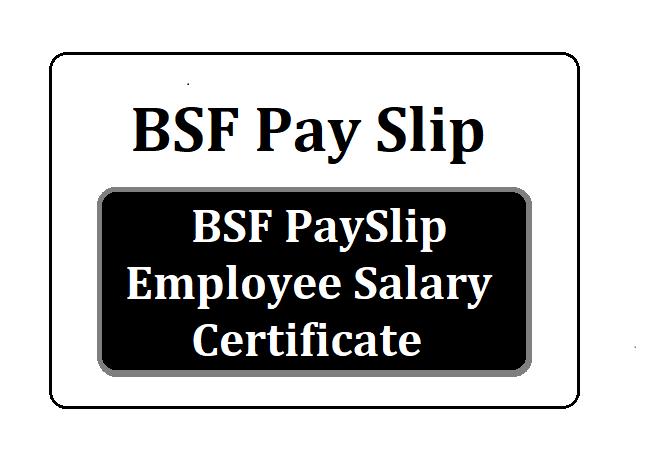 BSF pay slip