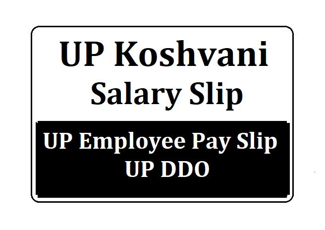Koshvani Salary Slip