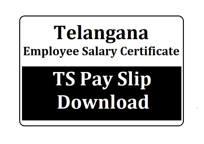 Telangana Employee Salary Certificate