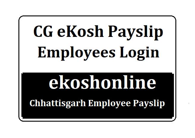 CG epayroll Payslip