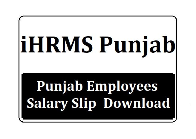 Punjab Employees Salary Slip